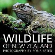 wildlife of nz